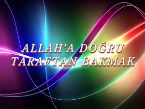 allaha-doc49fru-taraftan-bakmak-tabiat-risalesi-ac3a7c4b1lc4b1mlarc4b1-12