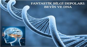 Fantastik Bilgi Depoları Beyin ve Dna-Tabiat Risalesi Açılımları 8